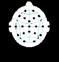 EEG_w